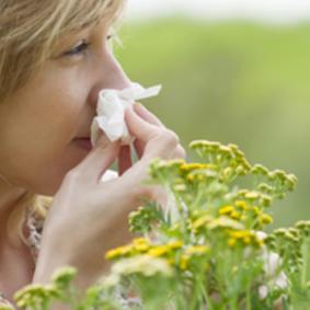 аллергия на прием антибиотиков